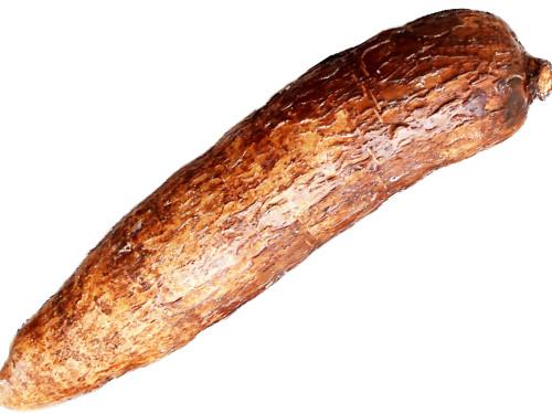 cassava tuber